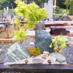 青石庭木セット